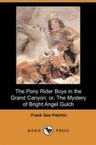 The Pony Rider Boys In The Grand Canyon by Frank Gee Patchin