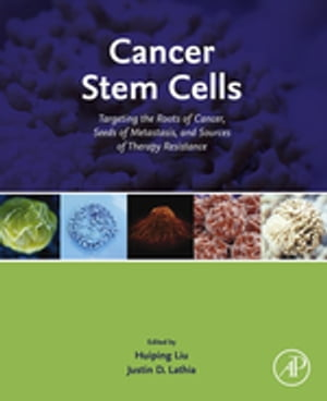 Cancer Stem Cells Targeting the Roots of Cancer,  Seeds of Metastasis,  and Sources of Therapy Resistance