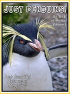 Just Penguin Photos! Big Book of Penguin Photographs & Pictures Vol. 1 by Big Book of Photos