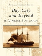 Bay City and Beyond in Vintage Postcards by Leon Katzinger
