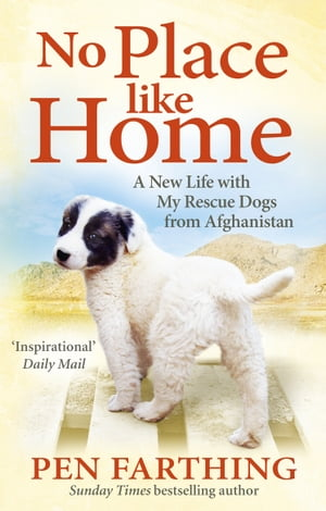 No Place Like Home A New Beginning with the Dogs of Afghanistan