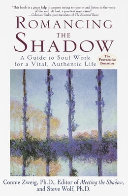 Book Romancing the Shadow: A Guide to Soul Work for a Vital, Authentic Life by Connie Zweig