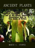 Ancient Plants : Being a Simple Account of the Past Vegetation of the Earth and of the Recent Important Discoveries Made in this Realm of Nature by Marie C. Stopes