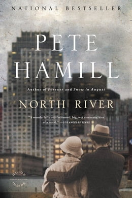Book North River: A Novel by Pete Hamill