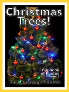 Just Christmas Tree Photos! Big Book of Photographs & Pictures of Christmas Trees, Vol. 1 by Big Book of Photos