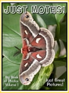 Just Moth Photos! Big Book of Photographs & Pictures of Moths, Vol. 1 by Big Book of Photos
