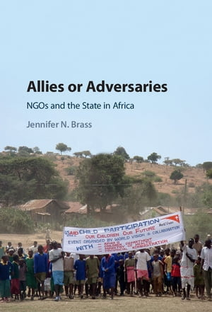 Allies or Adversaries NGOs and the State in Africa