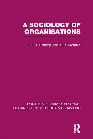 A Sociology of Organisations (RLE: Organizations)