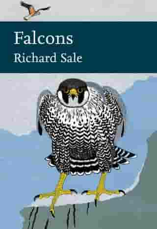 Falcons (Collins New Naturalist Library, Book 132) by Richard Sale