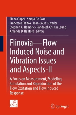 Flinovia—Flow Induced Noise and Vibration Issues and Aspects-II: A Focus on Measurement, Modeling, Simulation and Reproduction of the Flow Excitation and Flow Induced Response
