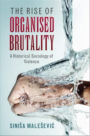 The Rise of Organised Brutality A Historical Sociology of Violence