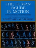 The Human Figure in Motion 93bd7172-0df0-40e5-b0f0-7ad91ece2730