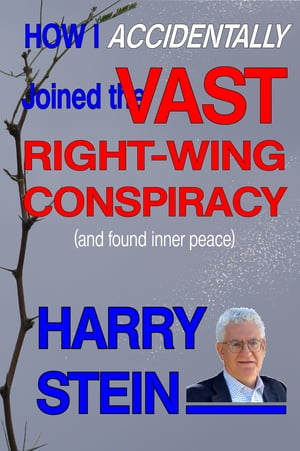 How I Accidentally Joined the Vast Right-Wing Conspiracy (and Found Inner Peace)