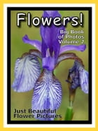 Just Flowers Photos! Big Book of Flowers Photographs & Pictures, Vol. 2 by Big Book of Photos