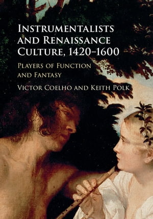 Instrumentalists and Renaissance Culture,  1420?1600 Players of Function and Fantasy