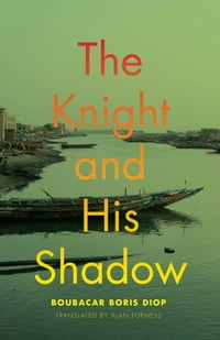 The Knight and His Shadow