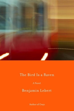 Book The Bird Is a Raven by Benjamin Lebert