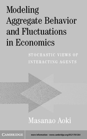 Modeling Aggregate Behavior and Fluctuations in Economics