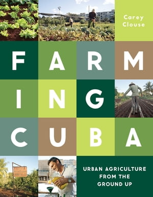 Farming Cuba Urban Agriculture From the Ground Up