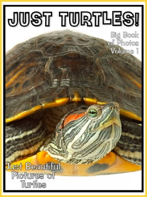 Just Turtle Photos! Big Book of Photographs & Pictures of Turtles,  Vol. 1
