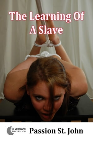The Learning Of A Slave