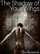The Shadow of Your Wings by Tim Bairstow