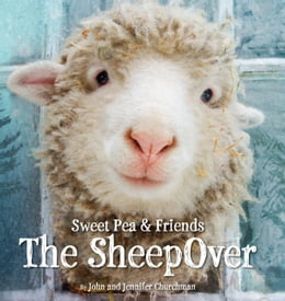 Book The SheepOver by John Churchman