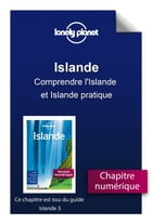 Islande 3 - Comprendre l'Islande et Islande pratique by Lonely PLANET