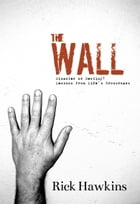 The Wall: Disaster or Destiny? Lessons from Life's Crossroads by Rick Hawkins