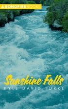 Sunshine Falls by Kyle David Torke