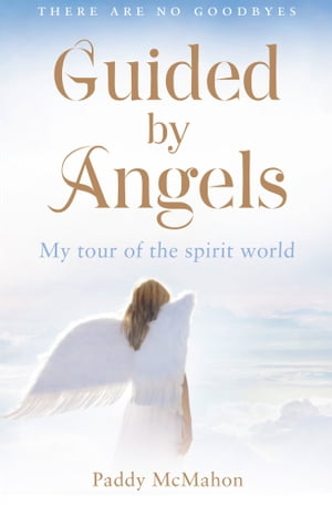 Guided By Angels: There Are No Goodbyes, My Tour of the Spirit World by Paddy McMahon