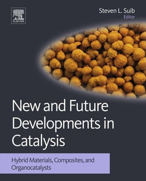 New and Future Developments in Catalysis Hybrid Materials,  Composites,  and Organocatalysts