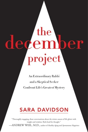 The December Project An Extraordinary Rabbi and a Skeptical Seeker Confront Life's Greatest Mystery