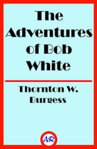 The Adventures of Bob White (Illustrated) by Thornton W. Burgess