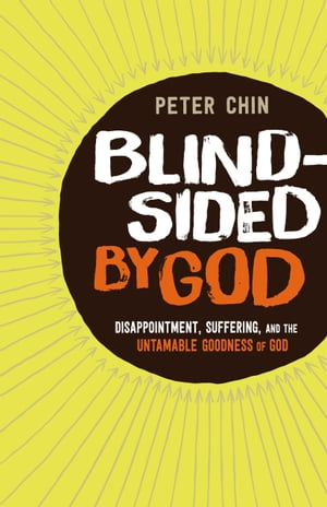 Blindsided by God Disappointment,  Suffering,  and the Untamable Goodness of God