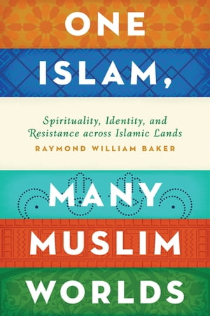 One Islam,  Many Muslim Worlds Spirituality,  Identity,  and Resistance across Islamic Lands