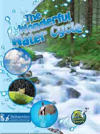 The Wonderful Water Cycle by Kimberly M. Hutmacher