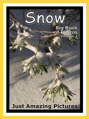Just Snow Photos! Big Book of Photographs & Pictures of Winter Snow,  Vol. 1