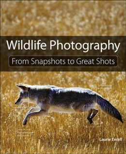 Book Wildlife Photography: From Snapshots to Great Shots by Laurie S. Excell