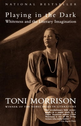 Book Playing in the Dark by Toni Morrison