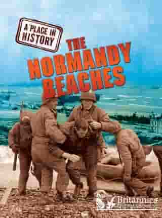 The Normandy Beaches by Brian Williams