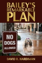 Bailey's Remarkable Plan by David R. Hardiman