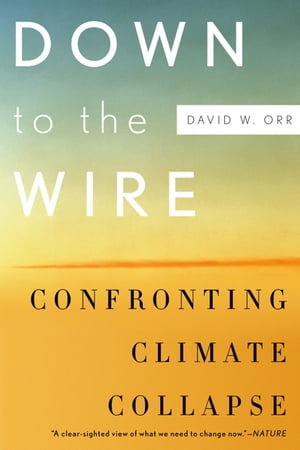 Down to the Wire Confronting Climate Collapse