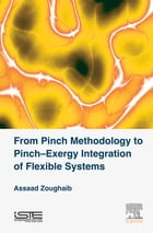 From Pinch Methodology to Pinch-Exergy Integration of Flexible Systems by Assaad Zoughaib