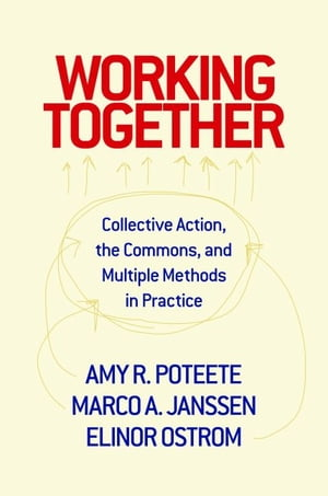 Working Together Collective Action,  the Commons,  and Multiple Methods in Practice