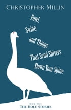 Fowl, Swine and Things That Send Shivers Down Your Spine (Book Two: The Hole Stories) by Christopher Millin
