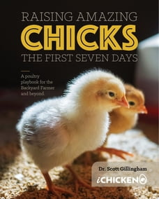 Raising Amazing Chicks: The First Seven Day