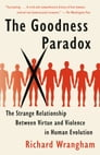 The Goodness Paradox Cover Image