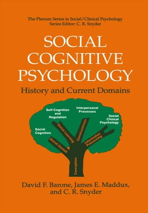 Social Cognitive Psychology: History and Current Domains