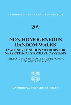Non-homogeneous Random Walks Lyapunov Function Methods for Near-Critical Stochastic Systems